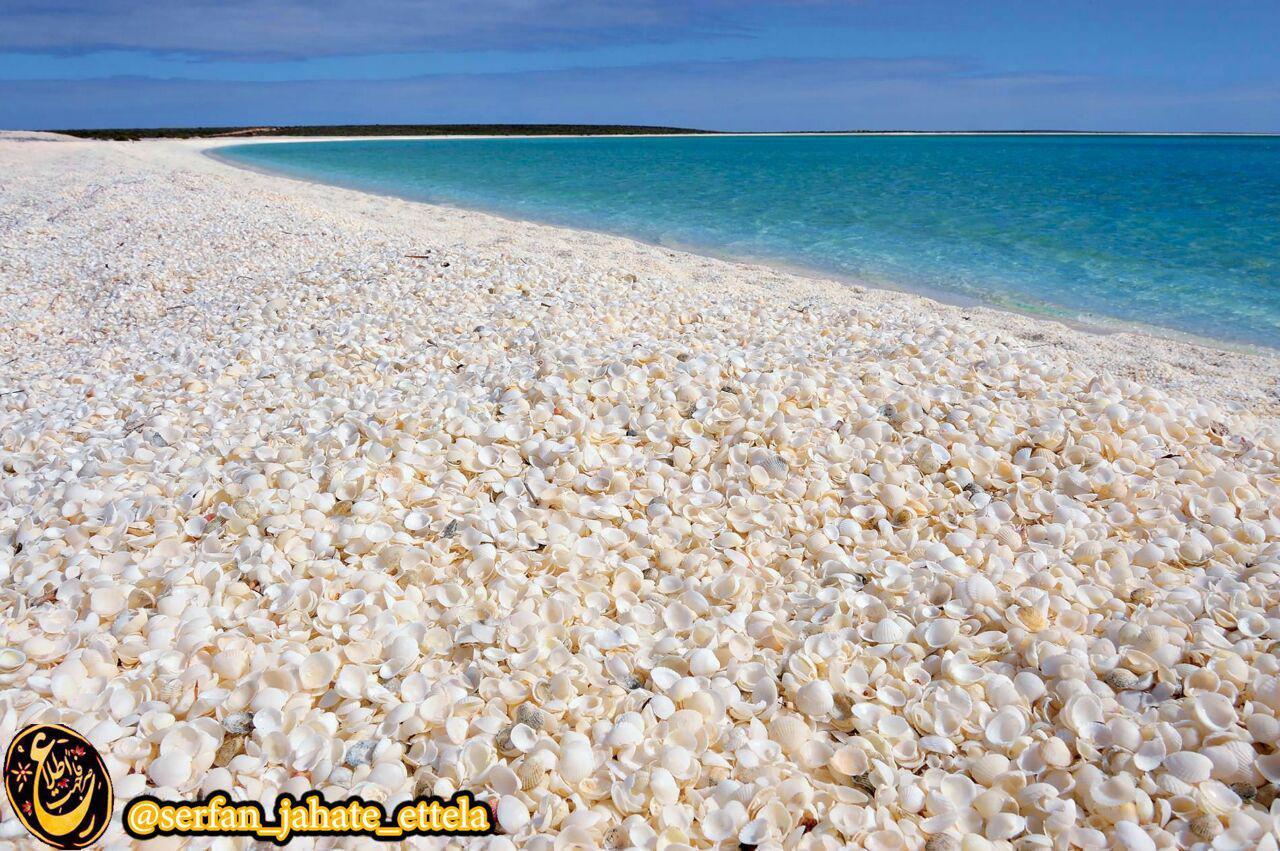 ساحل پوشیده شده از صدف، استرالیا