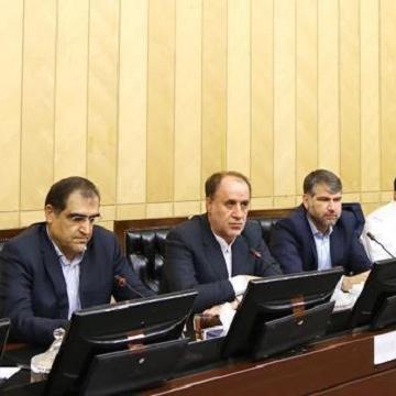 استقبال فراکسیون ولایی از ادامه کار قاضیزاده هاشمی در دولت
