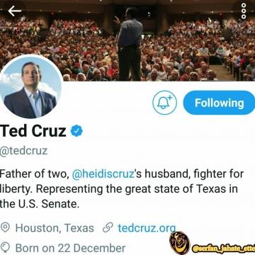 لایک کردن یک حساب پورن در توییتر توسط حسابکاربری تدکروز سناتور جمهوریخواه