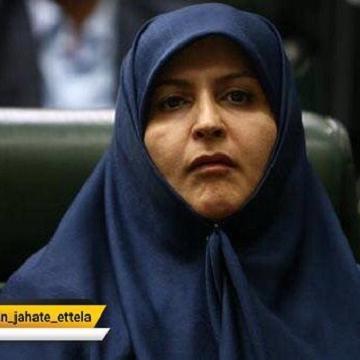 لایحه منع خشونت علیه زنان طی هفته آینده تقدیم مجلس خواهد شد