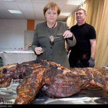 پذیرایی مردم شهر «ترینویلرسهاگن» با یک گراز پخته شده از آنگلا مرکل