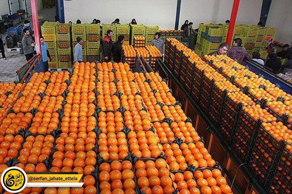 آغاز توزیع میوههای شب عید از فردا