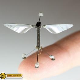 زنبورهای رباتیک گردهافشان