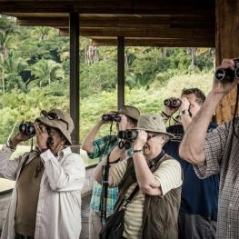 یک گروه گردشگر کانادایی در حال تماشای پرندگان در مکزیک