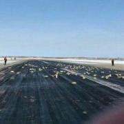 ویدئویی از سقوط چند تُن شمش طلا از هواپیمای روسیه!