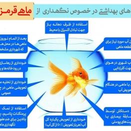 توصیههای بهداشتی در خصوص نگهداری ماهی قرمز در ایام نوروز