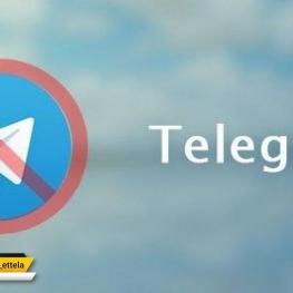 رحیمی: فیلترینگ تلگرام ایجاد انحصار در فضای رسانهای است