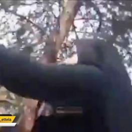 فیلمی ازکتک زدن یک خانم توسط مامور گشت ارشاد نیروی انتظامی