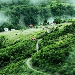 تصویر روز: دیلمان زیباترین ییلاق شرق گیلان