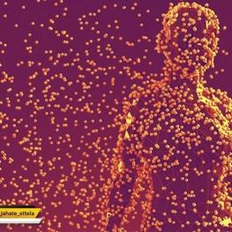 یک مرد ۲۰تا۳۰ ساله با وزن ۷۰کیلوگرم، میزبان ۳۹تریلیون میکروب هست