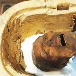 آیا جسد مومیایی را میتوان شناسایی کرد؟ نیاز است به آزمایش DNA از بستگان مرحوم