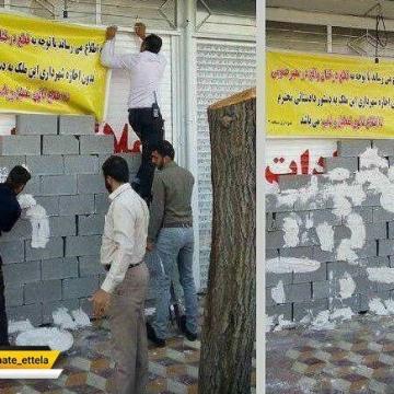 برخورد شهرداری شیراز با مالکی که درخت توت کهنسال موجود در پیادهرو را قطع کرده بود