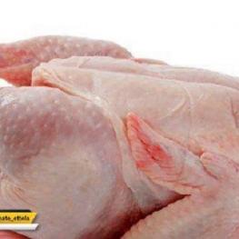 قیمت مرغ از ۱۱ هزارتومان گذشت