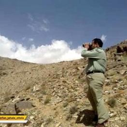 محیطبان پارک ملی گلستان در درگیری با شکارچیان به شهادت رسید