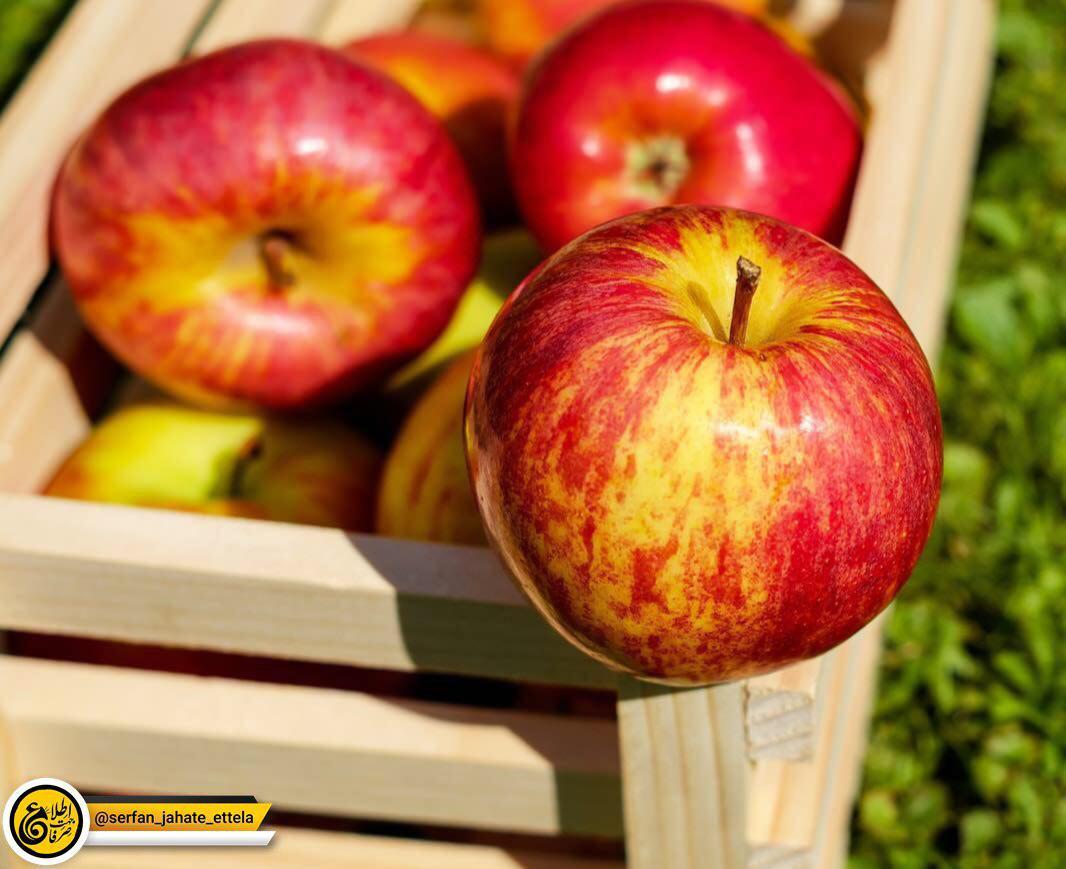 سیب بخورید!