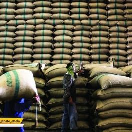 ۶۰ هزار تن برنج هندی در راه ایران