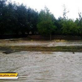 بارش باران در استان ایلام و جاری شدن سیل موجب زیرآب رفتن قسمتی از مزارع شهر مهران شد.