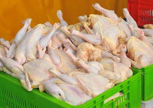 قیمت مرغ رکورد زد و از مرز ١٢ هزار تومان عبور کرد