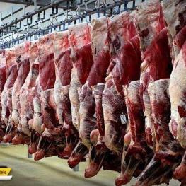 افزایش ۵۰ درصدی قیمت گوشت قرمز