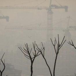 مرکز پایش آلودگی هوای اداره کل حفاظت محیط زیست استان تهران به بیماران قلبی و ریوی مبتلا به آسم توصیه کرد روز دوشنبه فعالیتهای بدنی خود را کاهش دهند.
