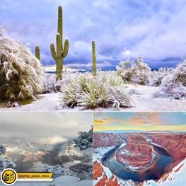 بارش برف در صحرای آریزونای آمریکا باعث خلق این تصاویر زیبا و کمنظیر شده!