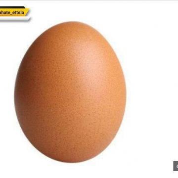 پیام تخم مرغ مشهور اینستاگرام: اگر زیر فشار شبکههای اجتماعی هستید کمک بگیرد