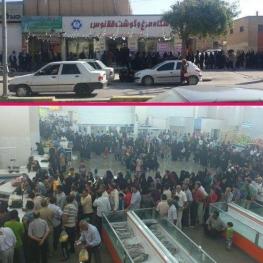 تصویر روز: صف مرغ در بوشهر