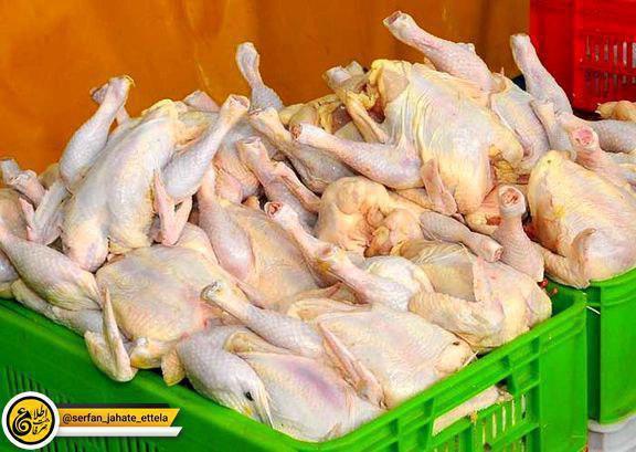 مرغ ۱۱ هزار و ۵۰۰ تومان؛ قیمت مصوب است/گرانتر نخرید