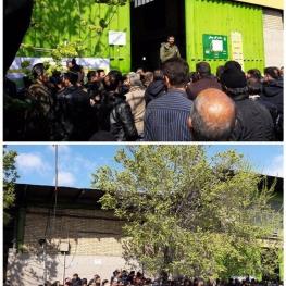 صف خرید مرغ در میدان میوه و ترهبار بهمن چند ساعت مانده به تحویل سال نو