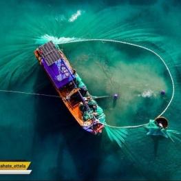 عکس روز به انتخاب نشنال جئوگرافیک: صید روز؛ ویتنام