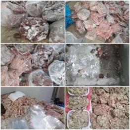 کشف ۱.۵ تن گوشت فاسد از پارکینگ منزل مسکونی