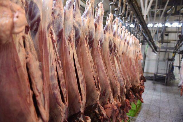 دپوی ۱۷ هزار تن گوشت وارداتی