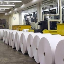 سرانه مصرف کاغذ ۲۲ تا ۲۵ کیلوگرم است