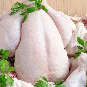 قیمت صادراتی مرغ کیلویی ۲۲ هزار تومان است