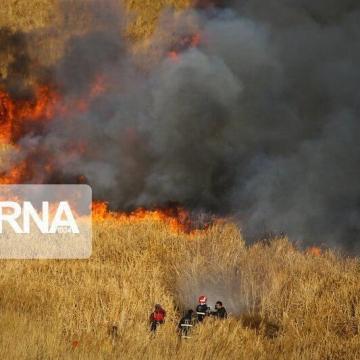 آتشسوزی گستردهای که از شامگاه گذشته در مزارع منطقه رودبار شروع شده بود به مراتع کوه وزکور نیز کشیده شده