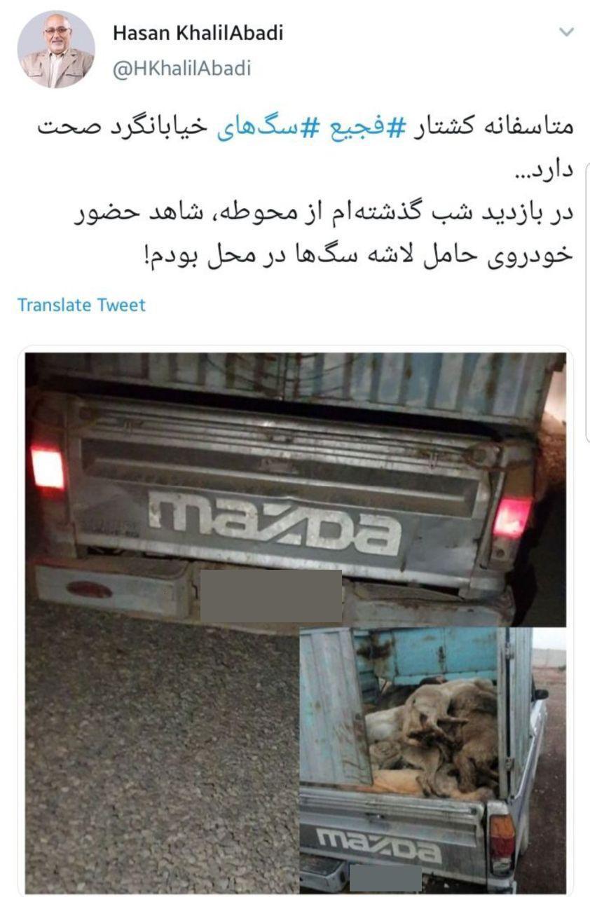 یک عضو شورای شهر تازگی پدیدهی «سگکشی» در تهران را تأیید کرد