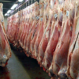 کاهش ۲۵ هزار تومانی قیمت گوشت گوساله در ۴۵ روز اخیر