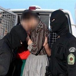 تمساح خلیج اعدام شد
