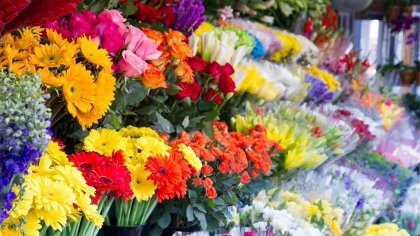 افت قیمت گل در بازار گلفروشان