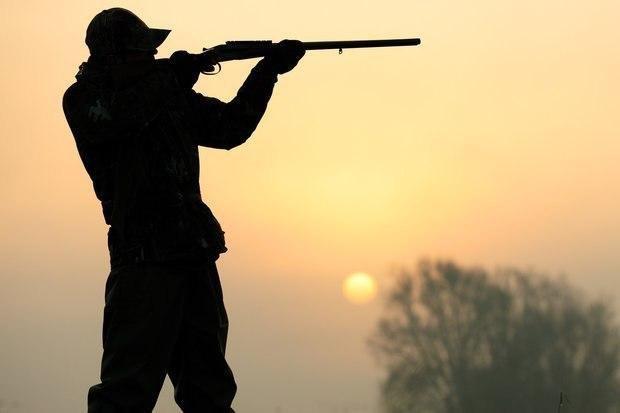 مصدومیت رئیس اداره محیط زیست سروستان با شلیک گلوله