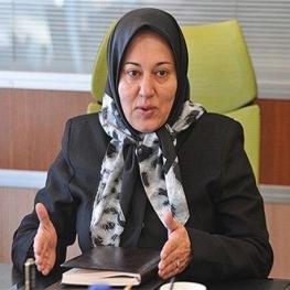 تاجران ایرانی نمی توانند با گونی ارز وارد کشور کنند!