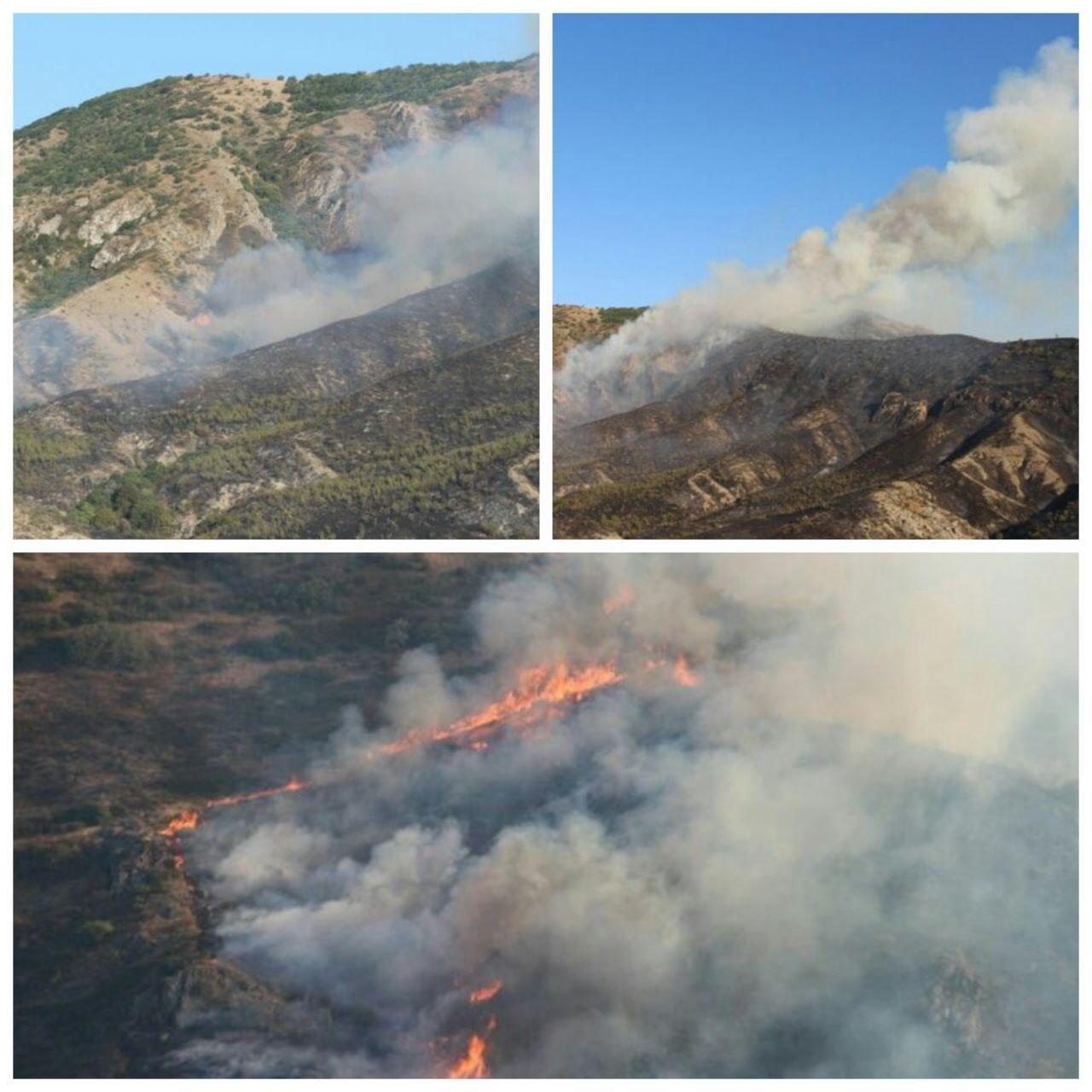 مهار ۸۰ درصدی آتشسوزی مراتع مشرف به جنگلهای ارسباران