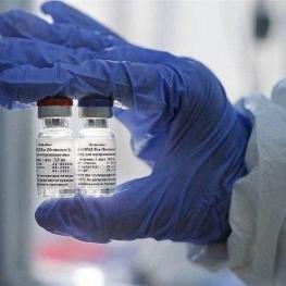 ۳ واکسن دیگر کرونا در روسیه در حال ثبت است