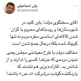 طعنه نماینده مجلس به سخنگوی دولت: مردم آقازاده نیستند که واردکننده گوشت شوند