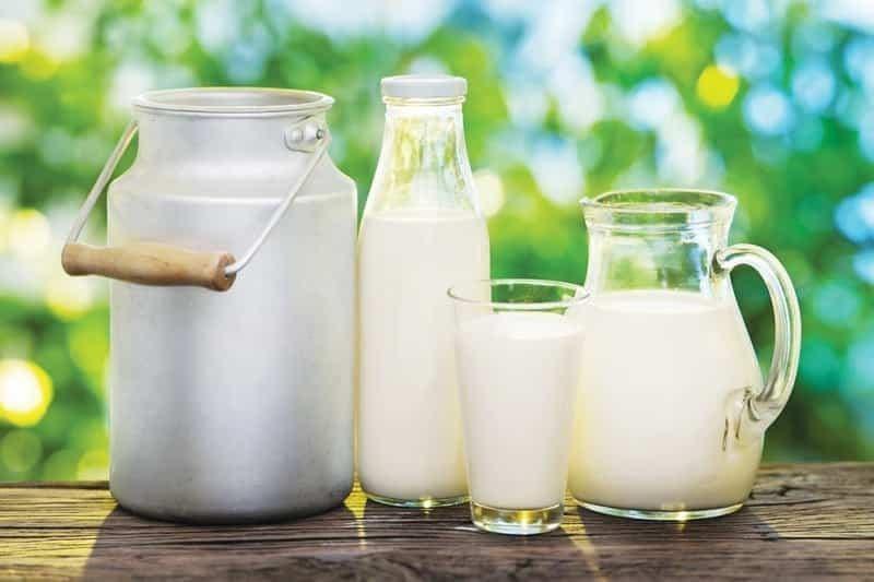 قاچاق شیر خشک از سر گرفته شد!