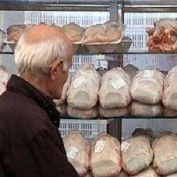 بازگشت مرغ به قیمت قبل، کمتر از یک هفته دیگر