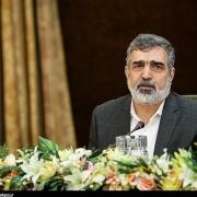 تکذیب دیدار شهید فخریزاده با بازرسان آژانس