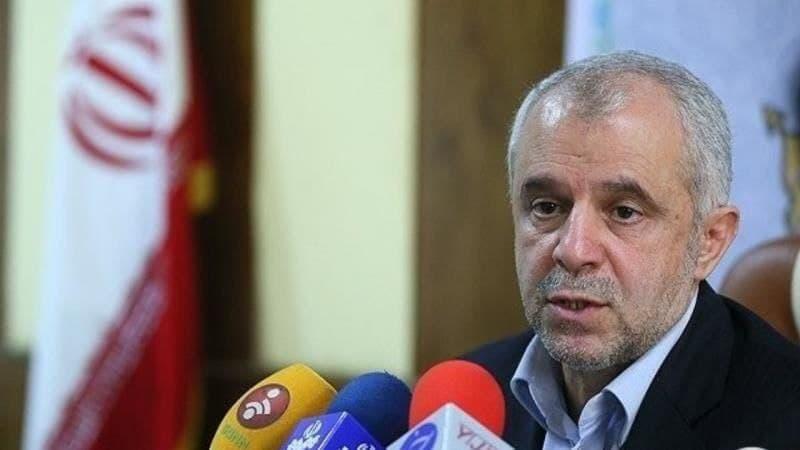 جانباختگان ایرانی هواپیمای اوکراینی شهید اعلام شدند