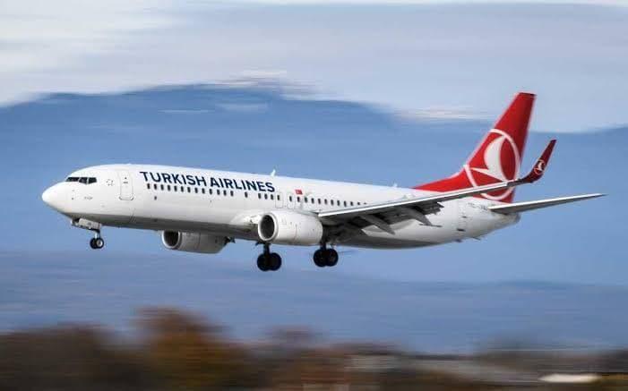 آنچه بر پرواز ۸۷۴ ترکیش گذشت