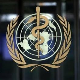 گزارش نهایی سازمان بهداشت جهانی پیرامون منشأ کرونا منتشر میشود